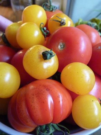 Glorious local toms - say no to beige food (unless it's porridge)