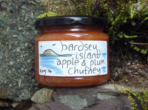 Bardsey Island Apple and Plum Chutney
