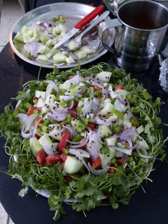 Israeli Salad (The Indian Traveler Classic) ready for action