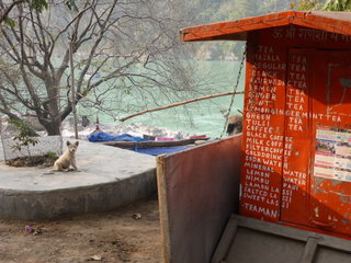 Our favoutire chai spot between Laxman Jhula and Ram Jhula (closed unfortunately)
