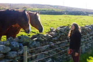 Jane feeding our neighbourly horses - mid Nettle pick