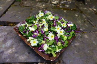 Foragers Salad