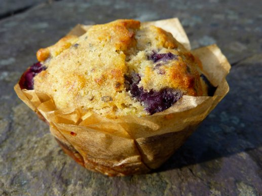 Blueberry and Hemp Seed Muffin