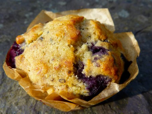 Mighty MUFF - Blueberry and Hemp Muffin (gluten free)