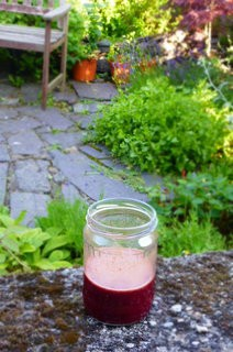 Beetroot, Kale and Green Pepper Juice