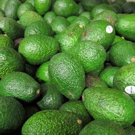 rsz_avocado-food-blog-tour-1_2