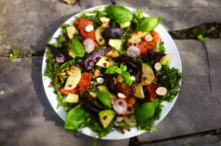 Chargrilled Ruby Grapefruit, Beetroot, and Cobnut Salad with Aronia Berry Dressing