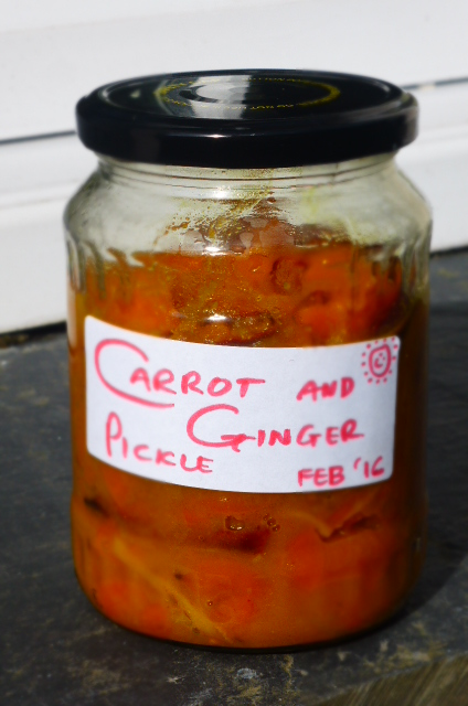 Quick Carrot and Ginger Pickle