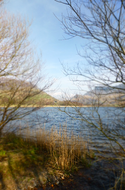 Wales is so beautiful in early spring - taken at Trigonos, Nantlle Valley, North Wales