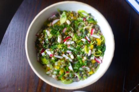 Farro and Cannellini Salad