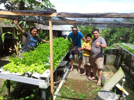 Inspecting a local salad outfit. These guys used interesting irrigation and tables. Clever. Salad leaves are very fashionable in rural Sulawesi. Tomahon, Sulawesi