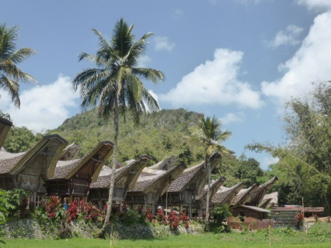 Traditional village - Tana Toraja, Sulawesi